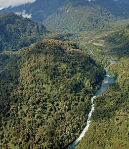 Río Cuervo - Patagonia Chilena